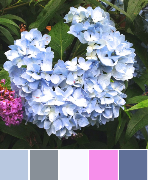 IMG_2247-palette(1)